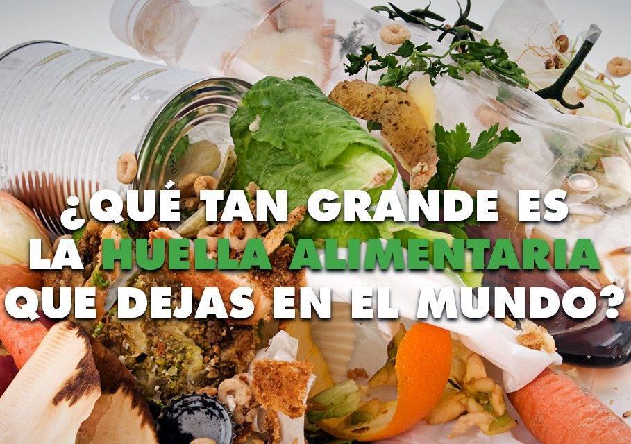 El derroche de alimentos de los españoles