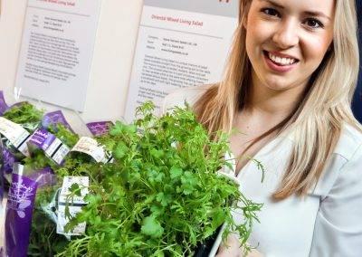Las hierbas arómaticas mejor locales e innovadoras
