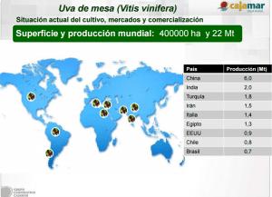 Cajamar Producc mundial UVA