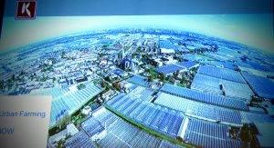 Urban Farming Koppert Cress