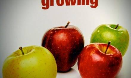 Los españoles importan una de cada dos manzanas de las que se comen