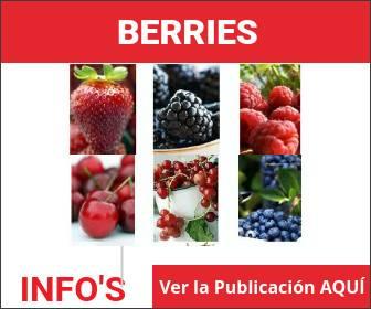 Berries INFO's