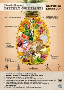 """La """"dietary guidelines"""" en un diseño de Antigua Barbuda, una región norteamericana de las pequeñas Antillas"""