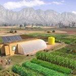 Un kit – huerto en un contenedor para alimentar a 150 personas