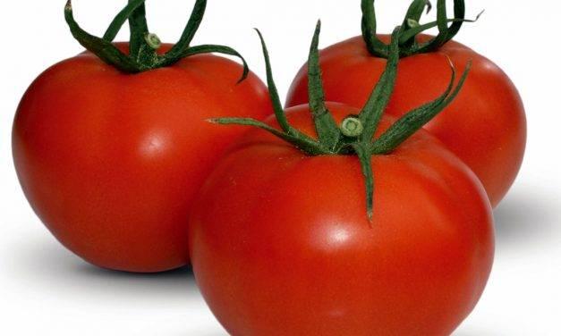 Un recubrimiento para alimentos fabricado con residuos vegetales