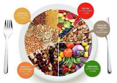 Una alimentación tan solo vegetariana, ¿es posible?