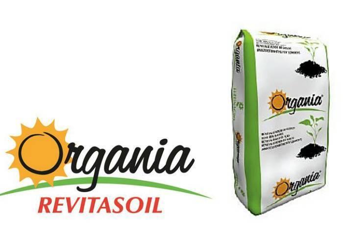 15% más de cosecha en cebolla Babosautilizando Organia Revitasoil