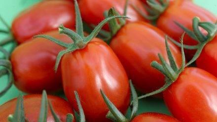 En la frutería uno de cada 3 tomates son snack