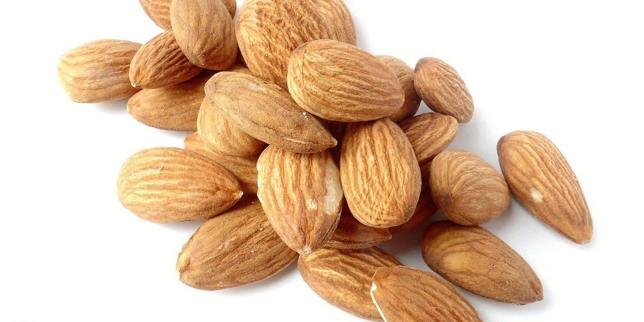 Unas notas a las propiedades saludables de los frutos secos
