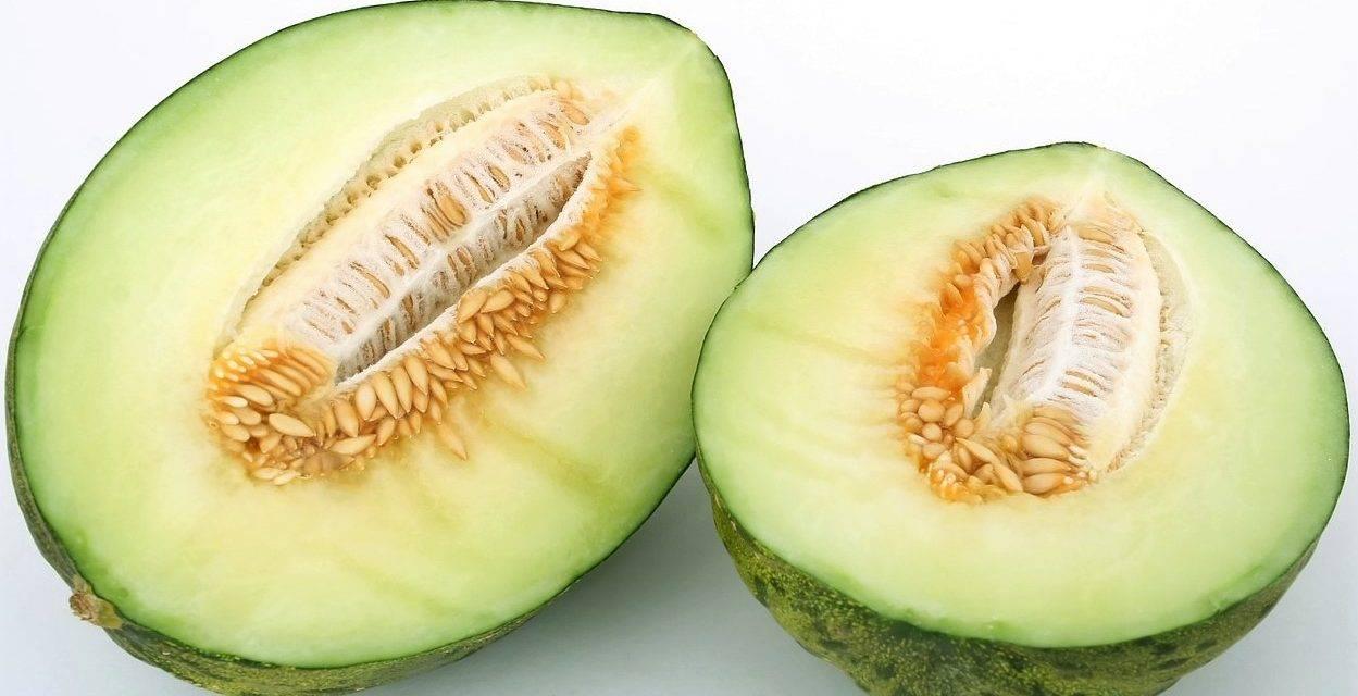 Diversidad y formas de los melones
