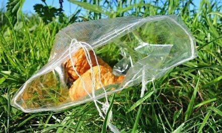 Lluvia de ideas para explicar la diferencia entre Fecha de caducidad y Consumo preferente contra el desperdicio alimentario