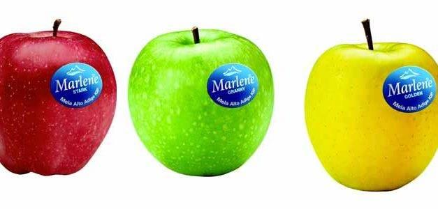 VOG habla de la Manzana para 2018