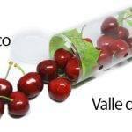Nuevos formatos de snack para motivar el consumo de frutas