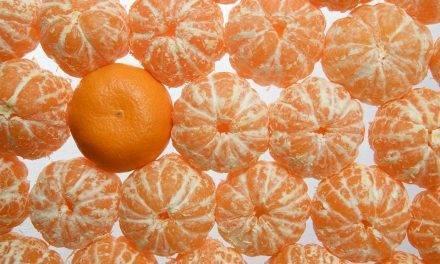 La asociación de productores de mandarina ORRI crea un geoportal de información en tiempo real