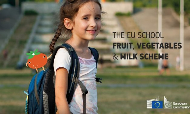 Promoción de frutas y verduras, ideas de verano para todo el año