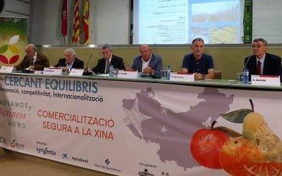 Las OPFH como modelo europeo para la mejora de la eficiencia del comercio de frutas y hortalizas