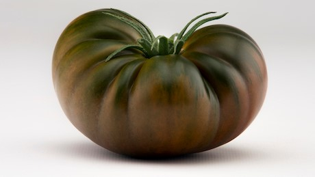 Nombres provocantes en variedades de tomates