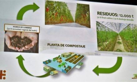 Prevención en el desperdicio alimentario y el caso de éxito de BioSabor en la industria hortícola