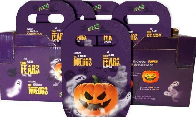 Las auténticas calabazas de Halloween