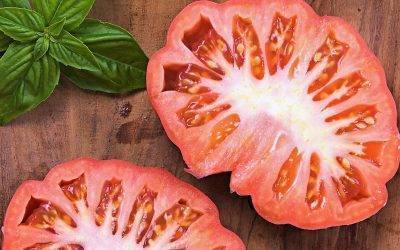 La Sunset en Estados Unidos tendrá tomate Monterosa
