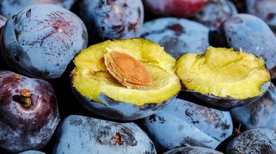 Los azúcares en la fruta, una proporción moderada y acompañados de vitaminas, minerales y fibra