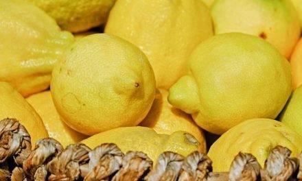 Beneficios, propiedades y usos del limón
