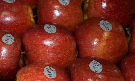 La manzana 'SuperSweet' envy™ incrementa su presencia en el lineal