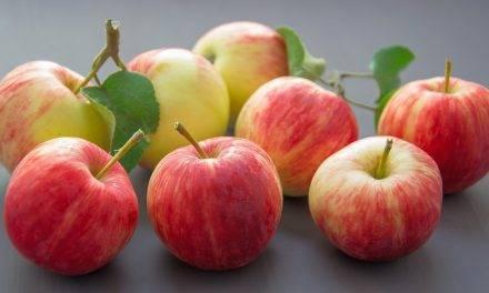 La manzana, un alimento envidiable ante otras frutas, una muy buena fuente de potasio y pectina