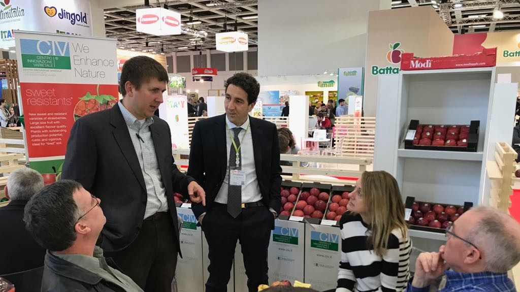 Strong interest of international groups for new CIV apple Varieties & Selections