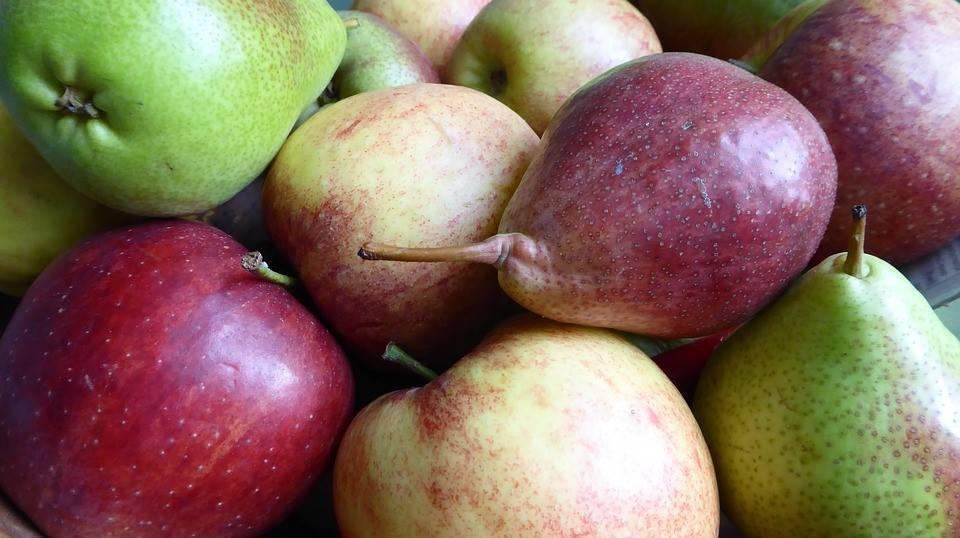 Afrucat habla del buen ritmo en la venta de fruta de pepita