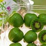 Los kiwi-berry