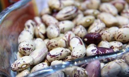 Las legumbres en la lucha contra la desnutrición y a favor de la salud