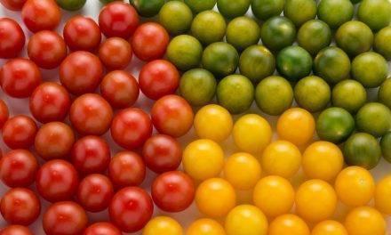 Kumato®, el Reino de los Sabores® y Caniles tres marcas de tomate