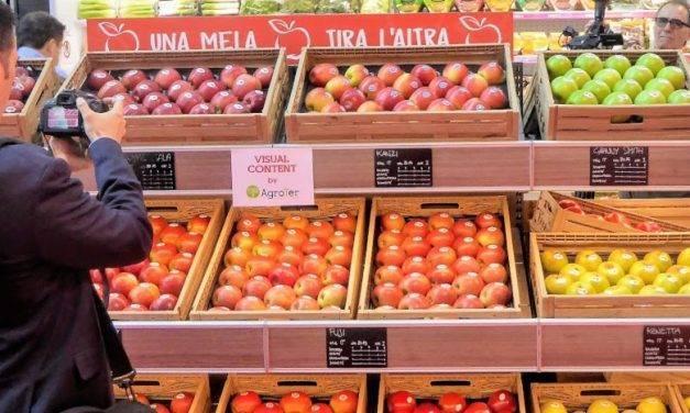 Las manzanas, ricas, diversas y una fuente de beneficios para la salud