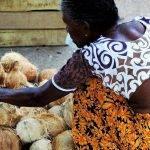Diez medidas conjuntas contra el desperdicio de alimentos