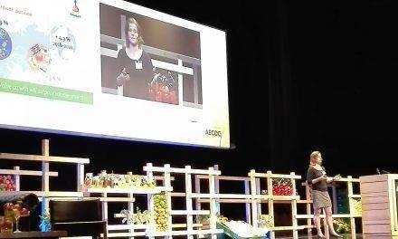 Crece el comercio de frutas y hortalizas
