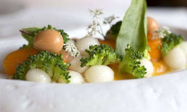 Un estudio determina al aceite de oliva virgen como el mejor para mantener el contenido nutricional del brócoli