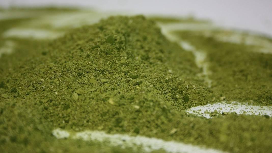 Harinas de microalgas para su uso como ingredientes alimentarios saludables y de alto valor nutricional