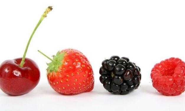 Los berries, una golosina sin azúcares añadidos, buena para todos