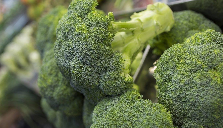 Las hectáreas dedicadas al cultivo de brócoli crecen cerca de un 3% este verano