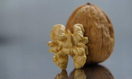 Nueces y dieta mediterránea, aliadas de la salud cardiovascular