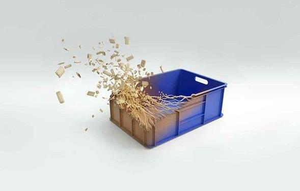 Gama de gadgets de cocina elaborados con un biocompuesto que combina madera y plástico