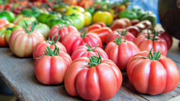 Tomates, ¿eran mejores los de antes?