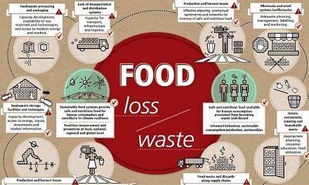 El desperdicio alimentario y la poscosecha