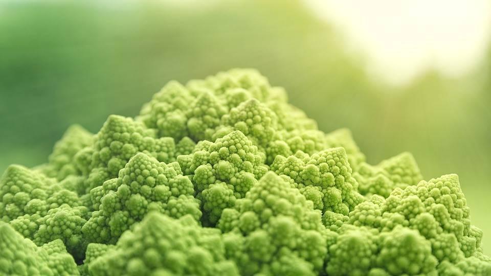 Las frutas y hortalizas siguen siendo los alimentos que más se consumen en los hogares