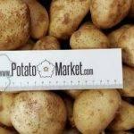 Si eres una tienda puedes comprar las patatas on line