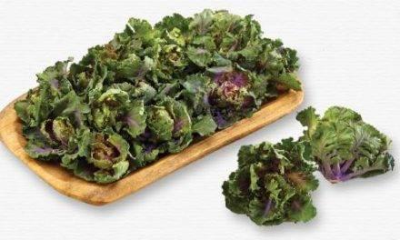 """Kalettes, """"la nueva forma de comer kale"""""""