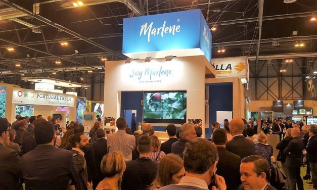 Fruit Attraction, Bio Marlene® Sponsors the Biofruit Congress