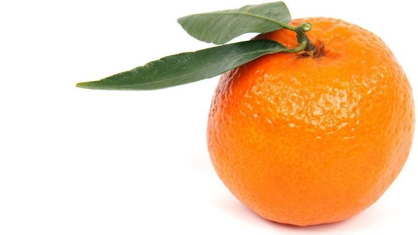 Mandarina - ActualFruVeg ed0ea109395