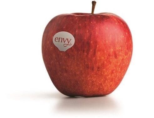 Envy™ vuelve a los lineales españoles